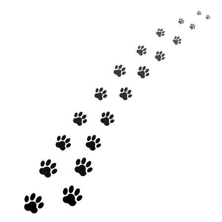 Asurnen voor huisdieren