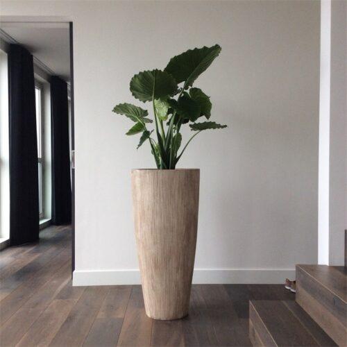 Bloemenvazen Fiberstone/Cement